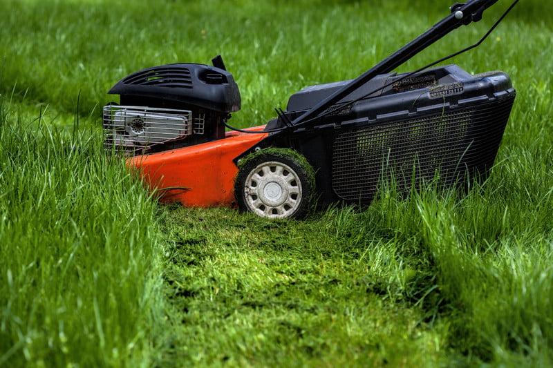Веснняя поддержание травы